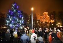 Norway Christmas Tree in Tašmajdan