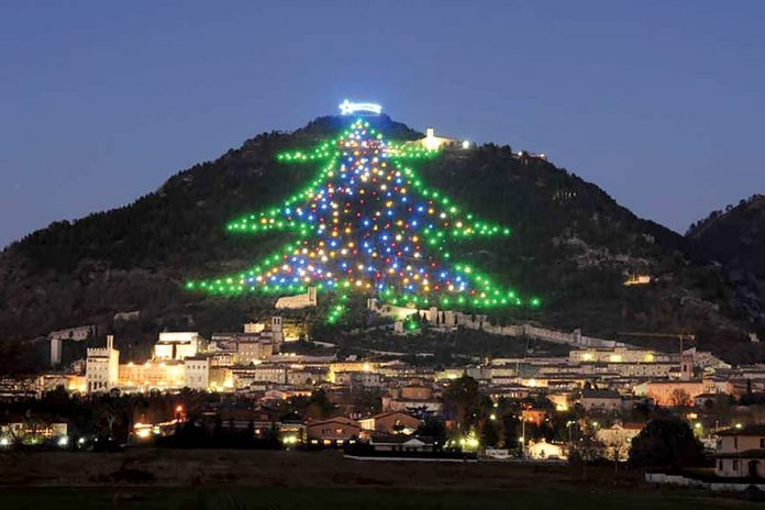Albero Di Natale Grande.The Biggest Christmas Tree In The World Cord Magazine