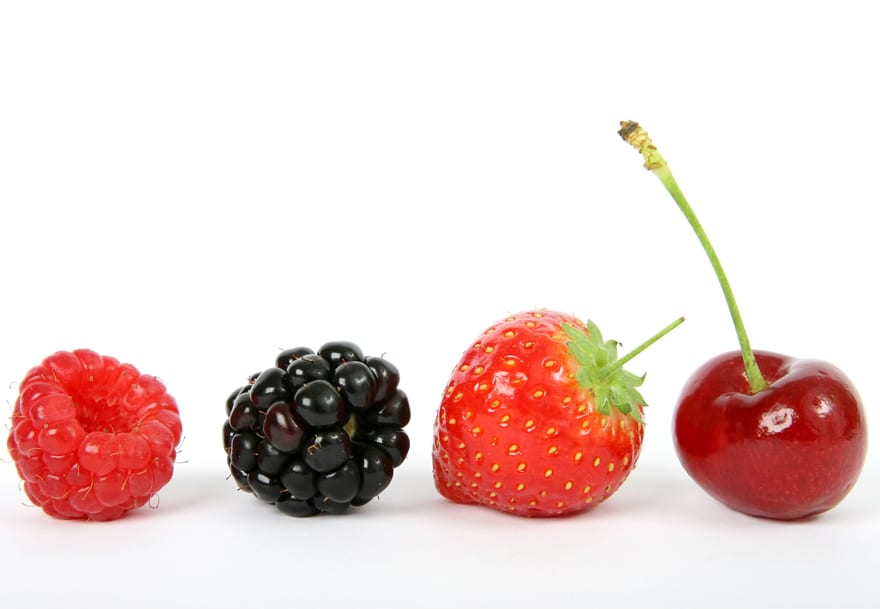 Fruits & Berries project leads to exports worth 7 million euros