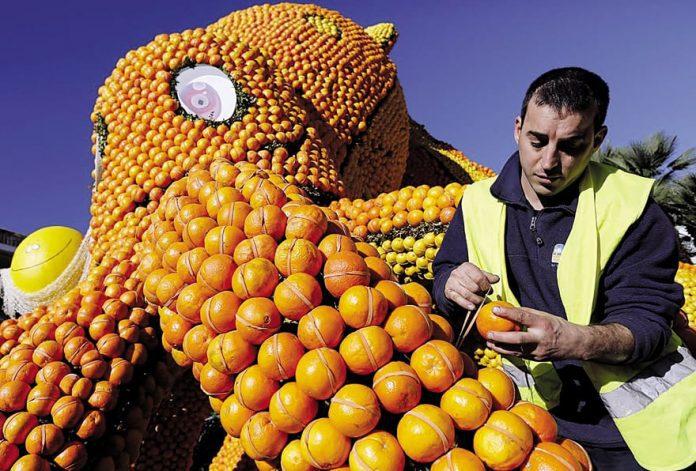 Lemon Festival France
