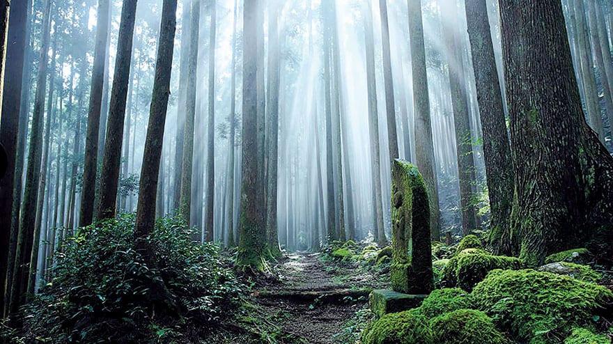 Kumano City Japanese Heritage Inspiring Future From The Past