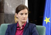 Ana Brnabić, Prime Minister of the Republic of Serbia, Foreign Investors