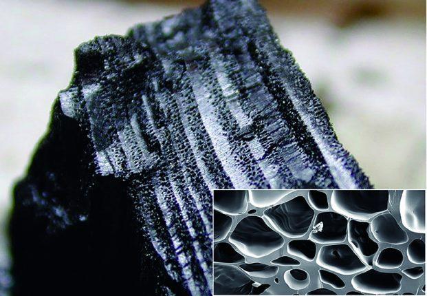 charcoal BASNA swiss