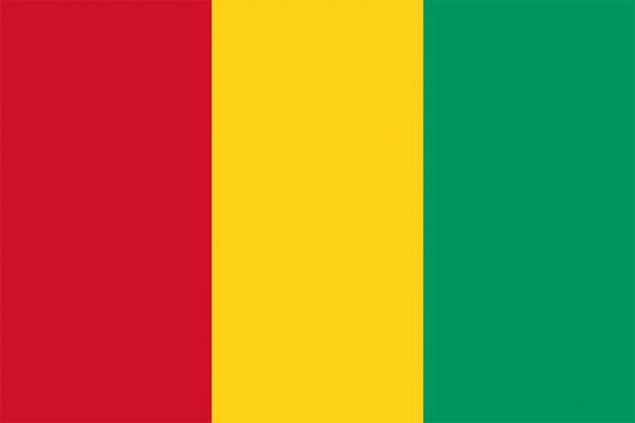 Guinea flag Gvineje