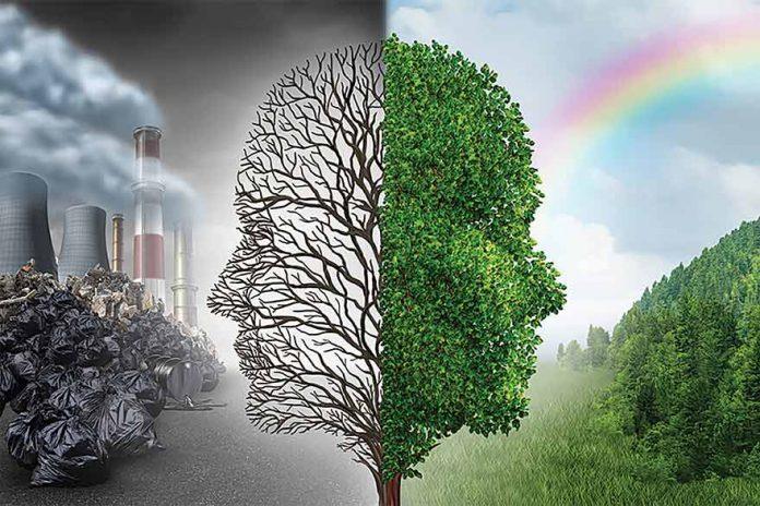 Effects of Environmental Degradation