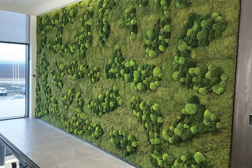 Green Wall Plus