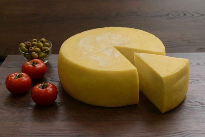 pirotski sir